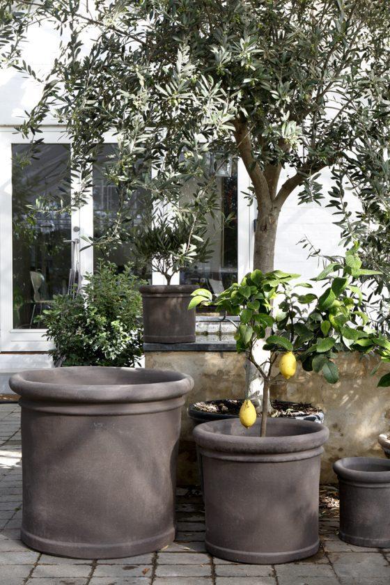 Exclusive Outdoor Pots
