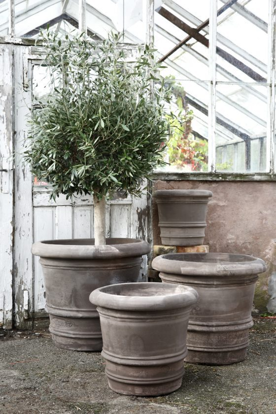 Exclusive Outdoor Pots